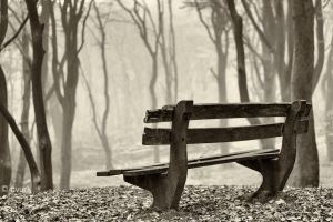 Forgotten Bench by tvurk