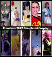 2012 Completed Cosplay by chinako