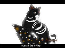Welcome to my life by Deathroke