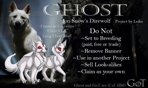 Ghost Project Banner by leikatay