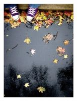 fall is both a verb and a noun by jonefe