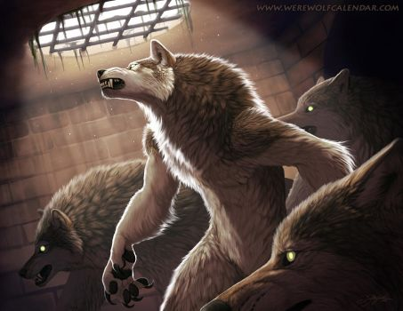 Dark Places by Kyndir