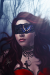 dreamcatcher_by_colorkiller-d4adndh.png