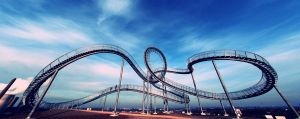 Tiger and Turtle by pacifier75