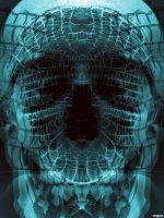 x-ray of a genius by moppaa