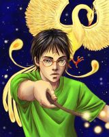 waiting for Harry Potter 7 by skorpi