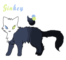 Ginkey Ref. by MeowingGrave
