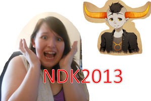 NDK2013 UPDATES!! by peppermix14