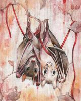 Entwined Bats by bedowynn