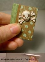 Skeleton Mini Book by funkmaster-c