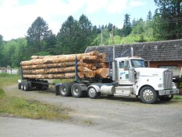 Loaded Logger by TomRedlion