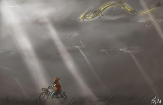 Rayquaza Sighting by lieusum