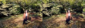 Early Autumn In The Arboretum At Kew by aegiandyad