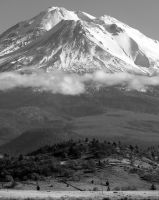 Mt. Shasta above the clouds by AFL