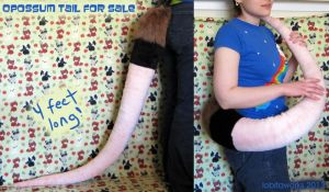 Opossum, Rat, or Mouse Tail- For Sale by LobitaWorks