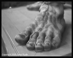 Colossal Foot, Nagano, Japan by DaveR99