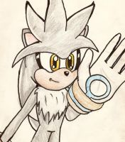 Silver Doodle by Lolly-pop-girl732