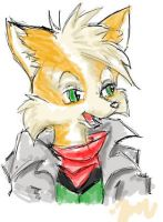 Fox McCloud by puffballzeri