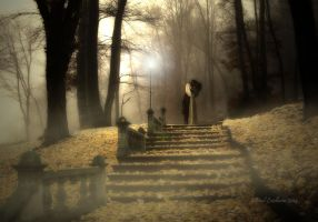 Couple On Stairs In Fog With Lamp Facebook by didyabringyagrog
