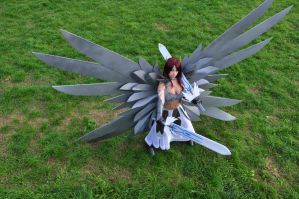 Erza Scarlet Cosplay 10 by HellDolly