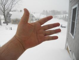 Give Winter A Hand! by Wilcox660