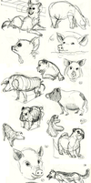 Animal Doodles Sketchdump 3 by Ric-M
