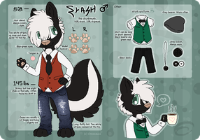 Flash Sprayer 2014 Reference Sheet by coreooo