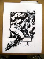 CATWOMAN by stalk