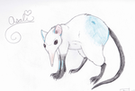 My Little Rodent Friend o3o by AnanyaAnimi