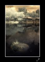 Chinese Garden _2 by stevenjo