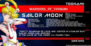 Warriors of Toonami: Sailor Moon by JPReckless2444