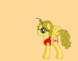 Canada as a pony by nogirl70