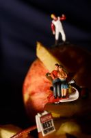 Sitting with Apples by DanB-Graphic-and-Web