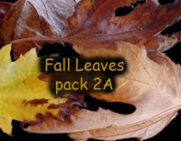 Fall Leaves pack 2 by Treeclimber-Stock