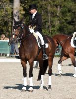 National Dressage and Jumping_178 by CalyHoney