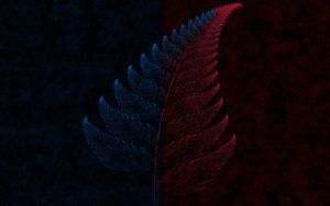 Abstract Fern by Pluberus