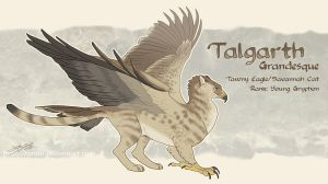 Talgarth Reference Sheet by Kyndir