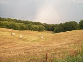 Rainbow and Hey Field by AFKBrandy