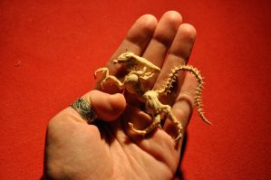 Giger's Alien and my hand by TheLadyButterfly