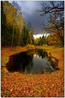 Autumn ..145.. by my-shots