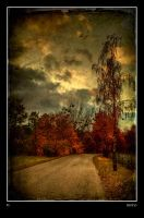 Autumn 09 by Riffo