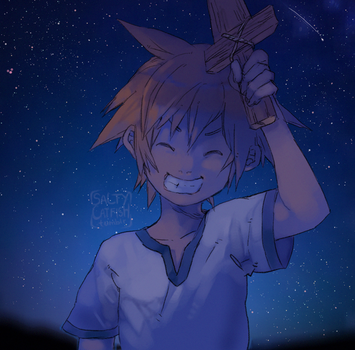 KH: Precious Stars in the Sky by saltycatfish
