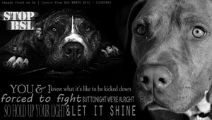 Stop BSL by WithoutTime