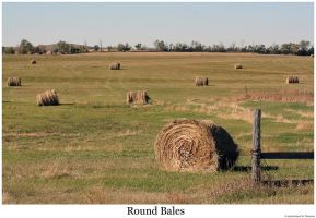 Round Bales by hunter1828