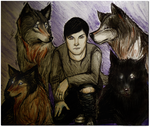 House of Wolves by PandorasBox341