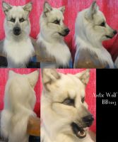 Arctic Wolf Head by Magpieb0nes