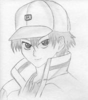 Echizen by Blooddust13