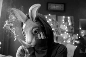 Worried Rabbit by LouiseCypher