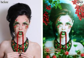 Red Berries by RoOnyM