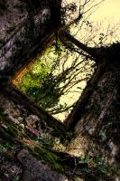 Old Window by shred2201